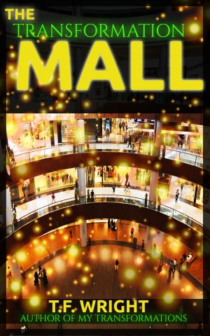 The Transformation Mall